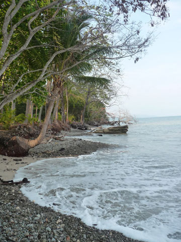 Tortuga Island Costa Rica Cruise